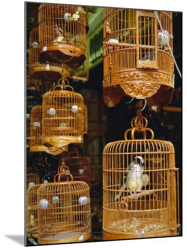 The Bird Market, Hong Lok Street, Mongkok, Kowloon, Hong Kong, China-Fraser Hall-Mounted Photographic Print