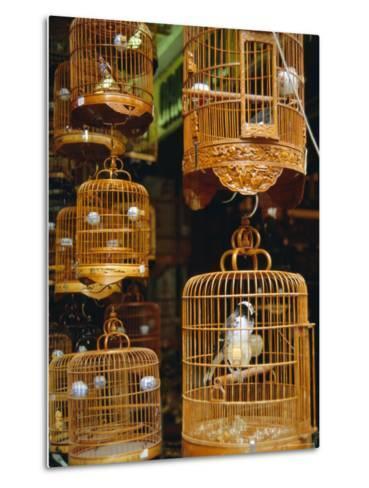 The Bird Market, Hong Lok Street, Mongkok, Kowloon, Hong Kong, China-Fraser Hall-Metal Print