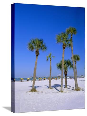 Palms and Beach, Clearwater Beach, Florida, USA-Fraser Hall-Stretched Canvas Print