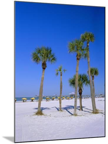 Palms and Beach, Clearwater Beach, Florida, USA-Fraser Hall-Mounted Photographic Print