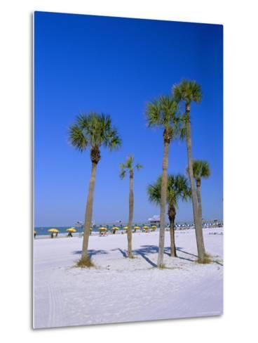 Palms and Beach, Clearwater Beach, Florida, USA-Fraser Hall-Metal Print