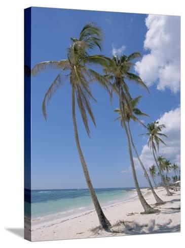 Saona Island, South Coast, Dominican Republic, Central America-Guy Thouvenin-Stretched Canvas Print
