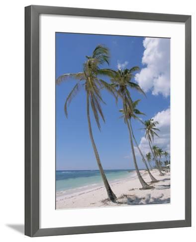 Saona Island, South Coast, Dominican Republic, Central America-Guy Thouvenin-Framed Art Print