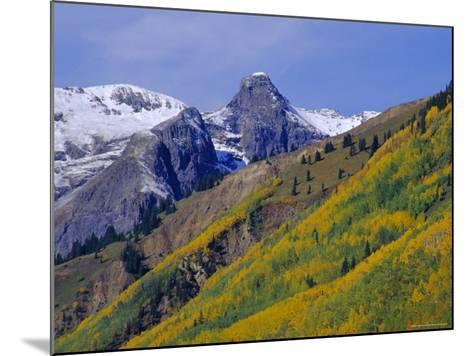 Aspen Pines and Snowy Peaks,San Juan Skyway, Colorado, USA-Jean Brooks-Mounted Photographic Print
