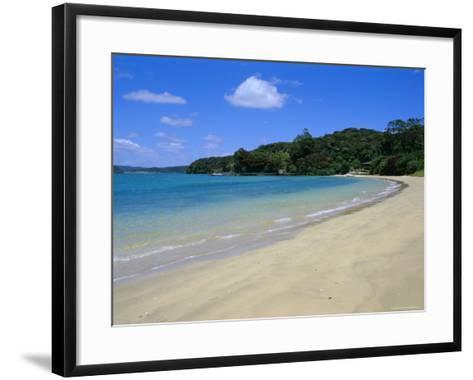 Bay of Islands, Northland, North Island, New Zealand, Pacific-Neale Clarke-Framed Art Print