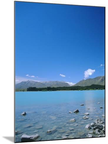 Lake Tekapo, Mount Cook National Park, Canterbury, South Island, New Zealand-Neale Clarke-Mounted Photographic Print