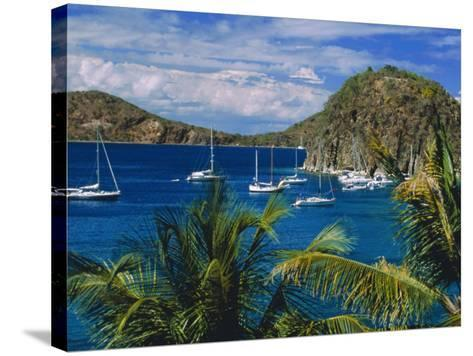 Guadeloupe, French Antilles, Caribbean, West Indies-Sylvain Grandadam-Stretched Canvas Print