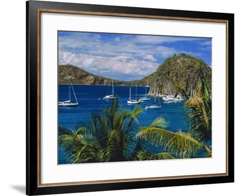 Guadeloupe, French Antilles, Caribbean, West Indies-Sylvain Grandadam-Framed Art Print