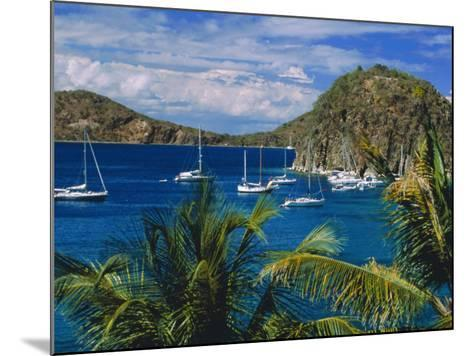 Guadeloupe, French Antilles, Caribbean, West Indies-Sylvain Grandadam-Mounted Photographic Print