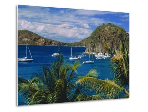 Guadeloupe, French Antilles, Caribbean, West Indies-Sylvain Grandadam-Metal Print