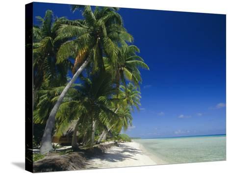 Beach, Rangiroa Atoll, Tuamotu Archipelago, French Polynesia, South Pacific Islands, Pacific-Sylvain Grandadam-Stretched Canvas Print
