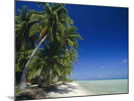 Beach, Rangiroa Atoll, Tuamotu Archipelago, French Polynesia, South Pacific Islands, Pacific-Sylvain Grandadam-Mounted Photographic Print