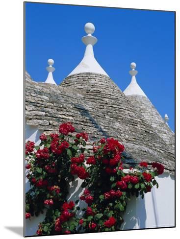 Alberobello, Typical Houses, Apulia (Puglia), Italy-Bruno Morandi-Mounted Photographic Print