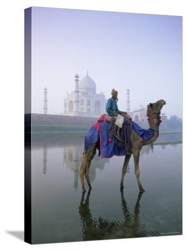 Camel and Rider in Front of the Taj Mahal and Yamuna River, Taj Mahal, Uttar Pradesh State, India-Gavin Hellier-Stretched Canvas Print