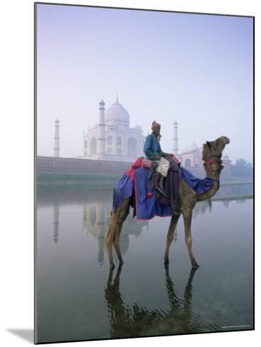 Camel and Rider in Front of the Taj Mahal and Yamuna River, Taj Mahal, Uttar Pradesh State, India-Gavin Hellier-Mounted Photographic Print