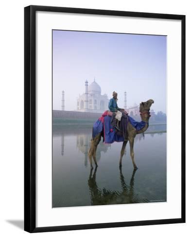 Camel and Rider in Front of the Taj Mahal and Yamuna River, Taj Mahal, Uttar Pradesh State, India-Gavin Hellier-Framed Art Print