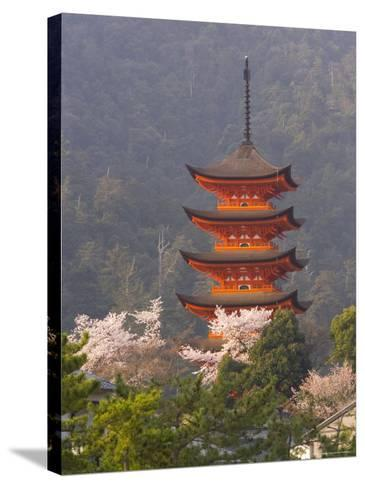 Cherry Blossoms (Sakura) and Famous Five-Storey Pagoda Dating from 1407, Island of Honshu, Japan-Gavin Hellier-Stretched Canvas Print