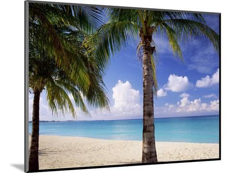 Palm Trees, Beach and Still Turquoise Sea, Seven Mile Beach, Cayman Islands, West Indies-Ruth Tomlinson-Mounted Photographic Print