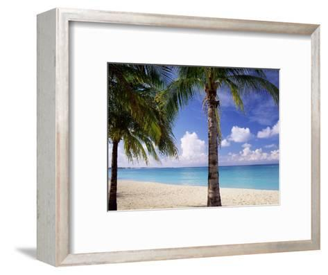 Palm Trees, Beach and Still Turquoise Sea, Seven Mile Beach, Cayman Islands, West Indies-Ruth Tomlinson-Framed Art Print
