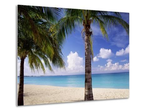 Palm Trees, Beach and Still Turquoise Sea, Seven Mile Beach, Cayman Islands, West Indies-Ruth Tomlinson-Metal Print