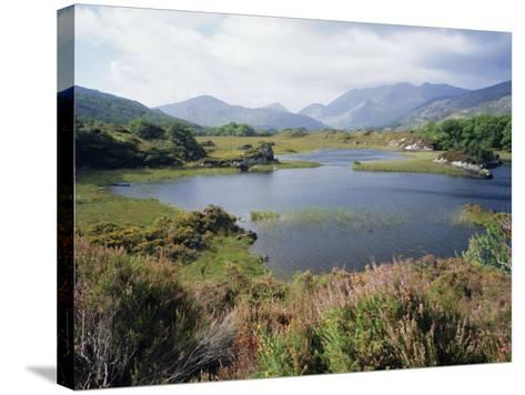 Upper Lake and Macgillycuddy's Reeks, Ring of Kerry, Killarney, Munster, Republic of Ireland (Eire)-Roy Rainford-Stretched Canvas Print