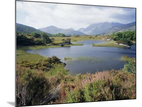 Upper Lake and Macgillycuddy's Reeks, Ring of Kerry, Killarney, Munster, Republic of Ireland (Eire)-Roy Rainford-Mounted Photographic Print