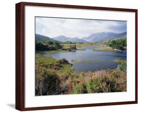 Upper Lake and Macgillycuddy's Reeks, Ring of Kerry, Killarney, Munster, Republic of Ireland (Eire)-Roy Rainford-Framed Art Print