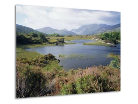Upper Lake and Macgillycuddy's Reeks, Ring of Kerry, Killarney, Munster, Republic of Ireland (Eire)-Roy Rainford-Metal Print