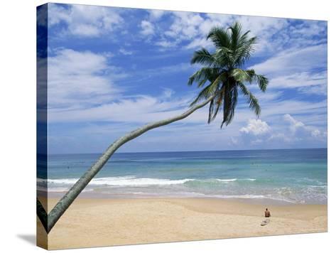 Palm Tree and Surfer, Hikkaduwa Beach, Island of Sri Lanka, Indian Ocean, Asia-Yadid Levy-Stretched Canvas Print