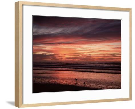 Eighty Mile Beach, Western Australia, Australia, Pacific-Jochen Schlenker-Framed Art Print