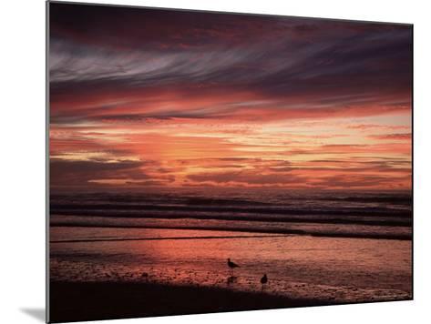 Eighty Mile Beach, Western Australia, Australia, Pacific-Jochen Schlenker-Mounted Photographic Print