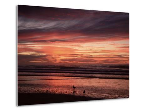 Eighty Mile Beach, Western Australia, Australia, Pacific-Jochen Schlenker-Metal Print