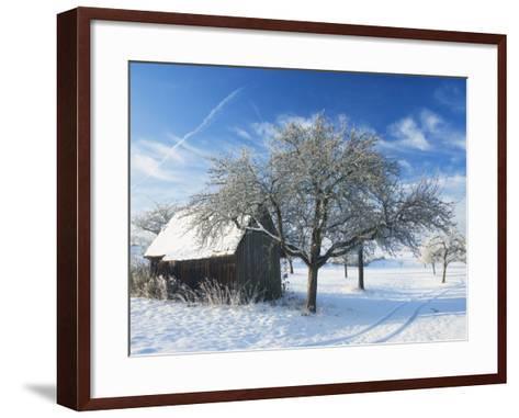 Barn and Apple Trees in Winter, Weigheim, Baden-Wurttemberg, Germany, Europe-Jochen Schlenker-Framed Art Print