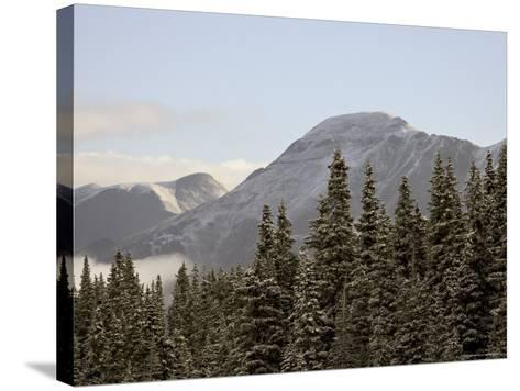 Mountains and Evergreens with Snow, Near Ouray, Colorado, United States of America, North America-James Hager-Stretched Canvas Print