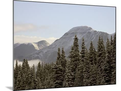 Mountains and Evergreens with Snow, Near Ouray, Colorado, United States of America, North America-James Hager-Mounted Photographic Print