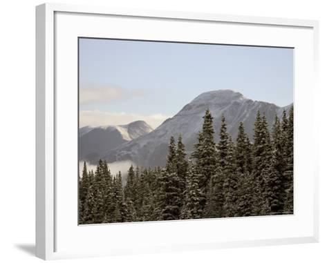 Mountains and Evergreens with Snow, Near Ouray, Colorado, United States of America, North America-James Hager-Framed Art Print