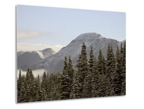 Mountains and Evergreens with Snow, Near Ouray, Colorado, United States of America, North America-James Hager-Metal Print
