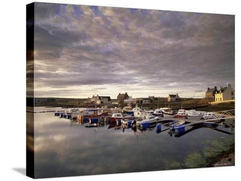 Walls, West Mainland, Shetland Islands, Scotland, United Kingdom, Europe-Patrick Dieudonne-Stretched Canvas Print