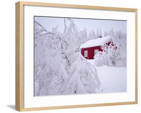 Nordmarka, Oslo, Norway, Scandinavia, Europe-Kim Hart-Framed Art Print
