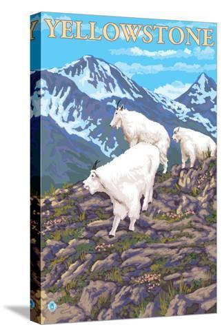 Mountain Goats Scene, Yellowstone National Park-Lantern Press-Stretched Canvas Print
