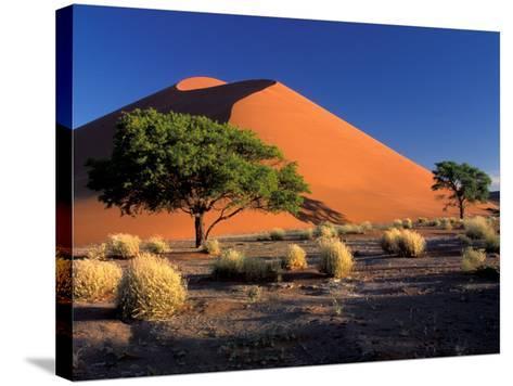 Sossosvlei Dunes, Namib-Naukluff Park, Namibia-Art Wolfe-Stretched Canvas Print