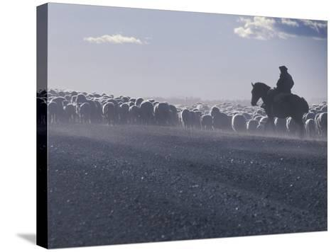 Gaucho, Patagonia, Argentina-Art Wolfe-Stretched Canvas Print