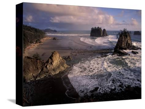 Second Beach, Olympic National Park, Washington, USA-Art Wolfe-Stretched Canvas Print