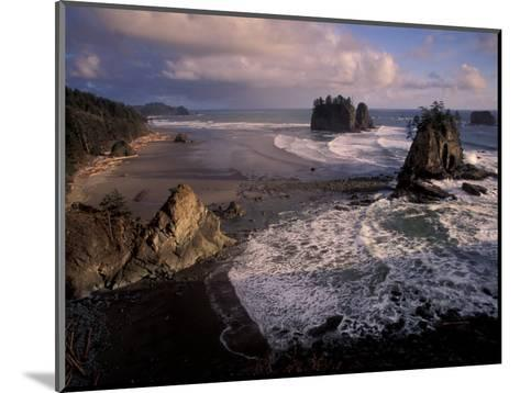 Second Beach, Olympic National Park, Washington, USA-Art Wolfe-Mounted Photographic Print
