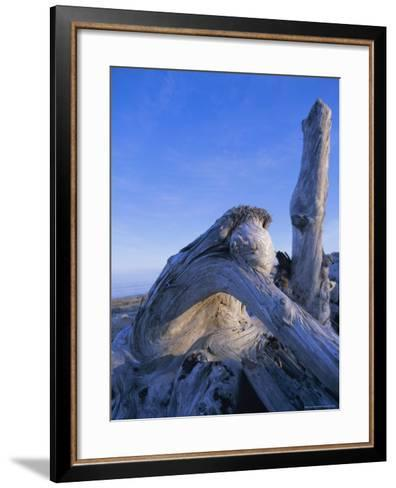 Queen Charlotte Islands, British Columbia (B.C.), Canada, North America-Oliviero Olivieri-Framed Art Print