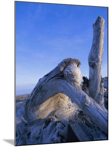 Queen Charlotte Islands, British Columbia (B.C.), Canada, North America-Oliviero Olivieri-Mounted Photographic Print