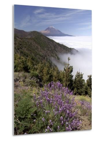 Mount Teide (Pico De Teide), Tenerife, Canary Islands, Spain-Sergio Pitamitz-Metal Print