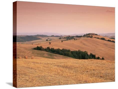 Fields at Sunset, Crete Senesi, Siena Province, Tuscany, Italy, Europe-Sergio Pitamitz-Stretched Canvas Print