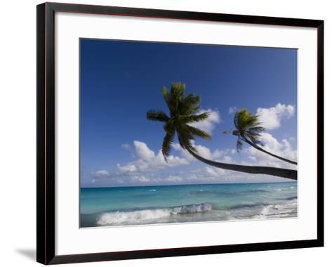 Fakarawa, Tuamotu Archipelago, French Polynesia, Pacific Islands, Pacific-Sergio Pitamitz-Framed Art Print