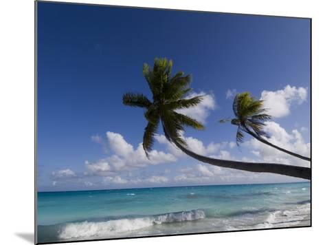 Fakarawa, Tuamotu Archipelago, French Polynesia, Pacific Islands, Pacific-Sergio Pitamitz-Mounted Photographic Print